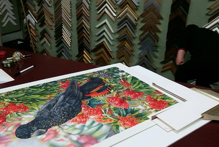 Heidi Willis_Bird Artist_watercolour_botanical