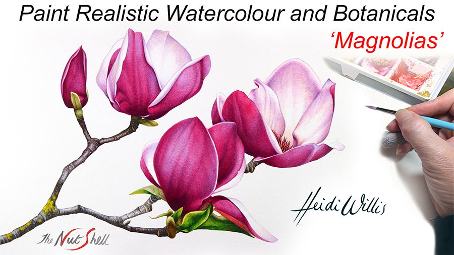 Heidi Willis_Online Painting Tutorial_Magnolias_botanical_watercolor