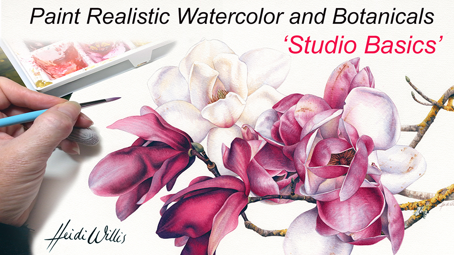 Heidi Willis_Online Tutorial_Watercolor_Watercolour Painting_Botanical