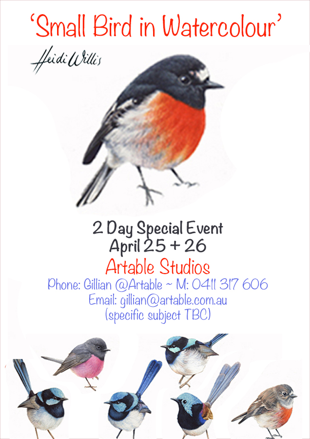 Heidi-Willis_QLD_Bird Painting Workshop_watercolour