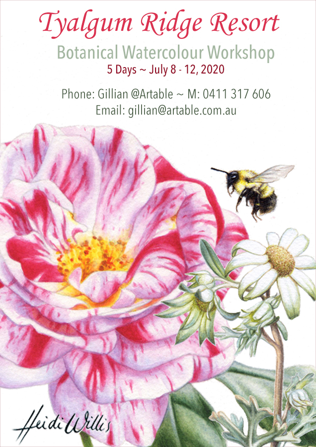 Heidi-Willis_Tyalgum_Botanical Painting Workshop_watercolour