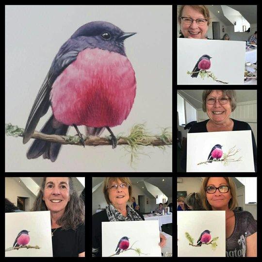 Heidi Willis_watercolour_bird painting_botanical workshop_tasmania