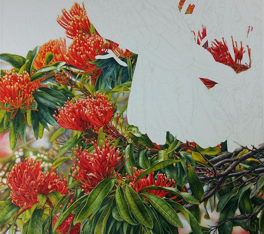 heidi willis_Botanical artist_bird painting_watercolour_s