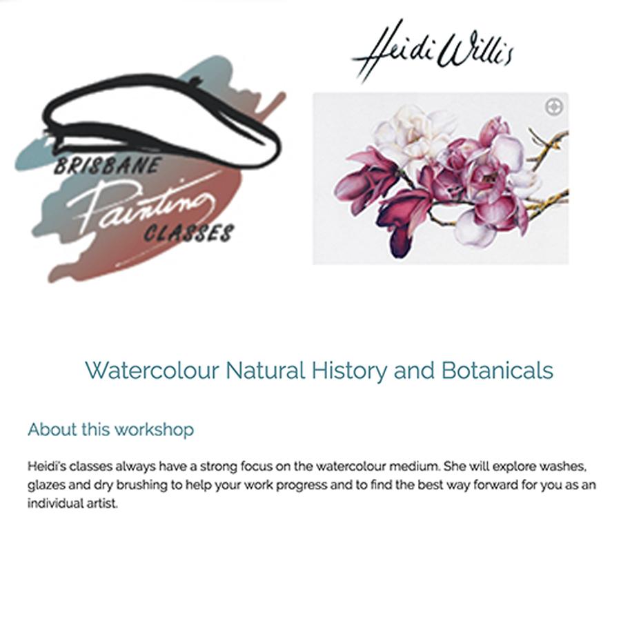 heidi willis_Brisbane_Watercolour_Botanical Art Class