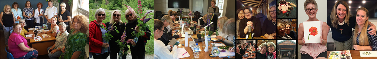 heidi willis_artist_art class_watercolour_botanical
