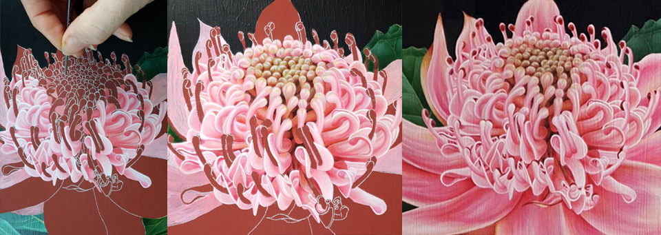 heidi willis_artist_botanical art_natural history_waratah painting