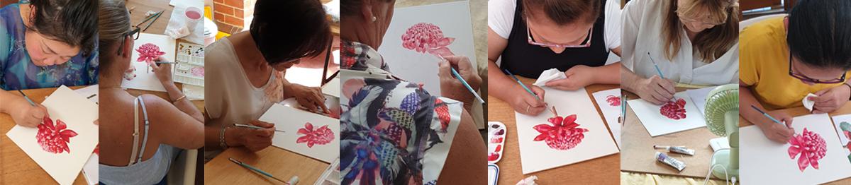 heidi willis_artist_illustrator_Melbourne botanical illustration_art class_waratah_watercolour