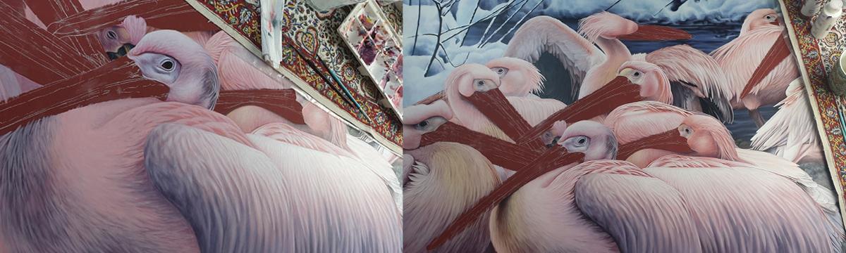 heidi willis_artist_illustrator_pelican painting_acrylics bird art_2