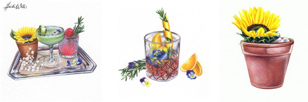 heidi-willis_artist_illustrator_watercolour-1 copy