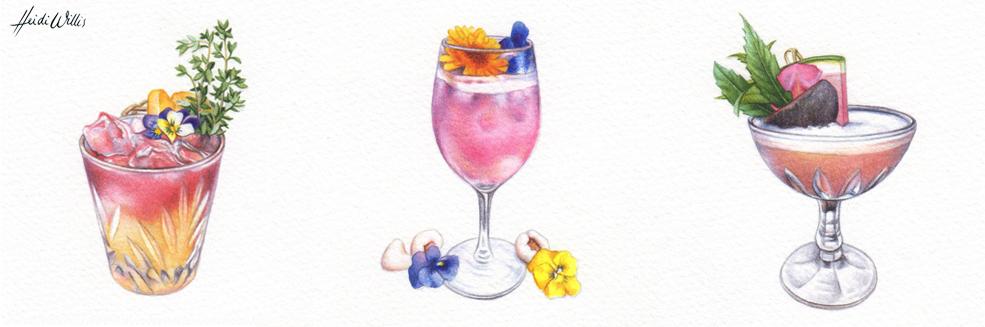heidi-willis_artist_illustrator_watercolour-3
