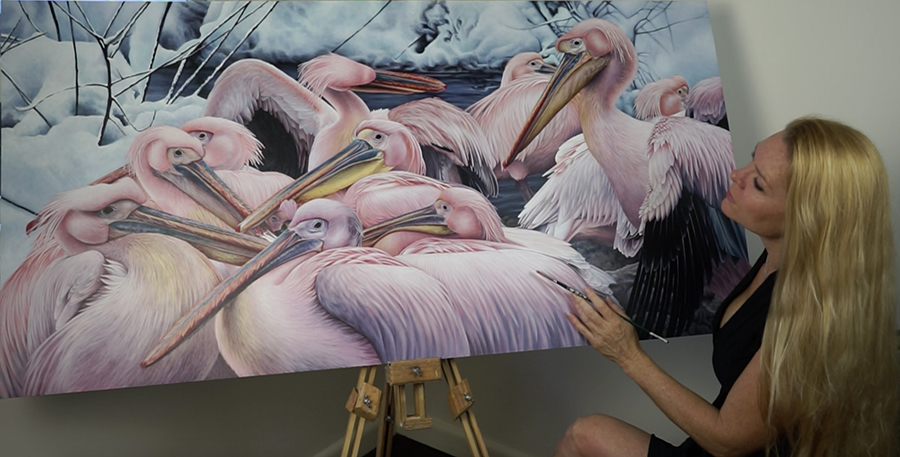 heidi willis_australian artist_illustrator_bird painting