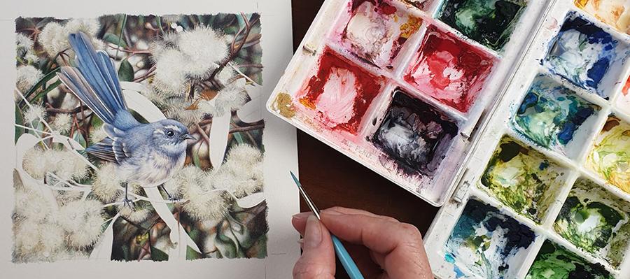 heidi willis_australian bird painting_artist_watercolour_fantail