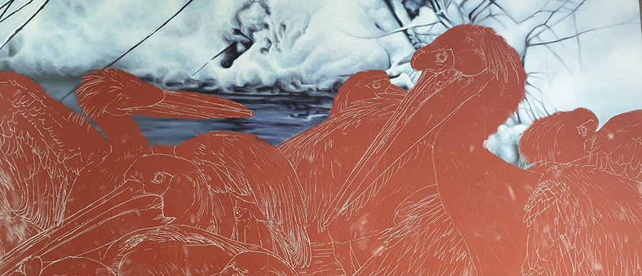 heidi willis_bird artist_pelican painting_acrylics