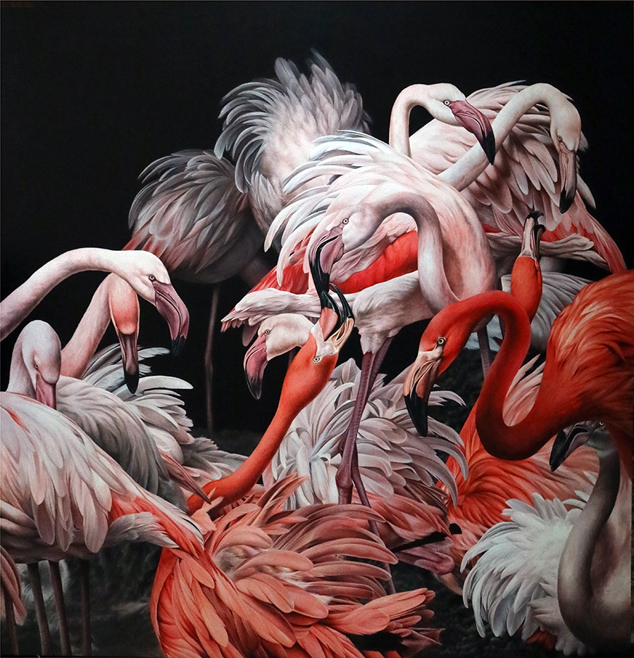 heidi willis_bird painting_artist_flamingos