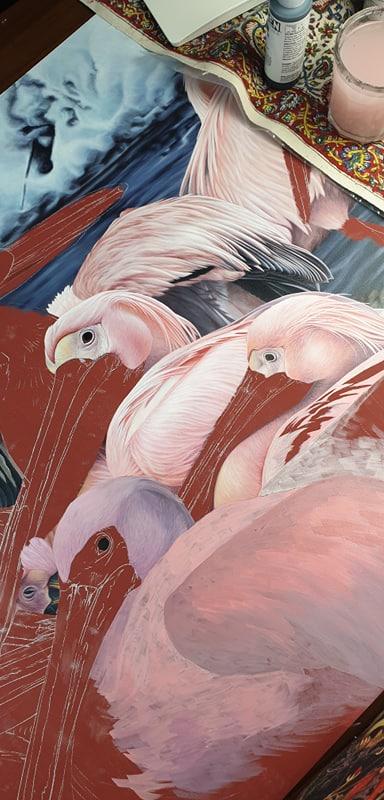 heidi willis_bird painting_artist_pelicans_pelikans_acrylics_illustration