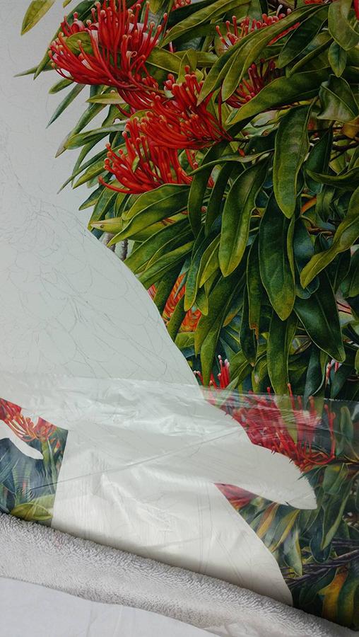 heidi willis_bird painting_botanical art_australian artist