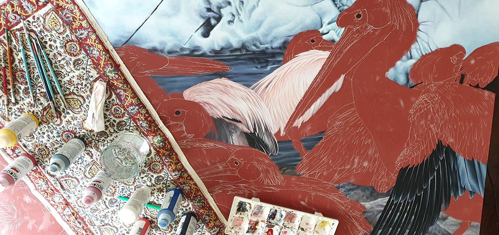 heidi willis_bird painting_pelicans_acrylics_artist