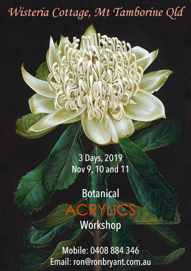 heidi willis_botanical_watercolour_acrylics art class_workshop_painting_qld