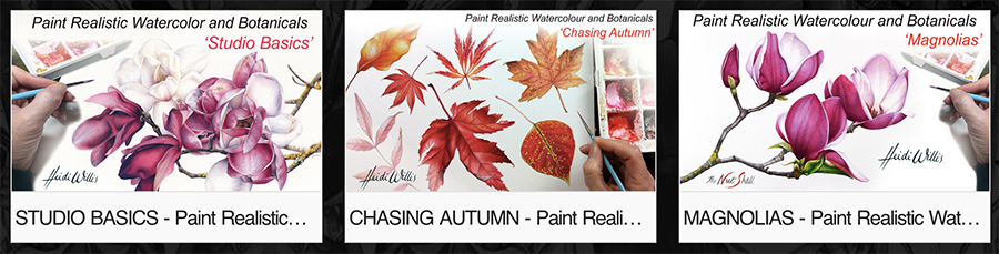 heidi willis_online painting tutorials_botanical_watercolor