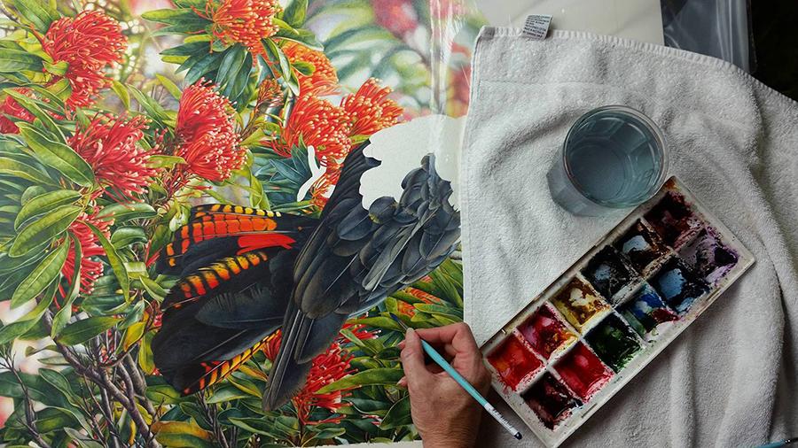 heidi willis_watercolour_bird artist_cockatoo