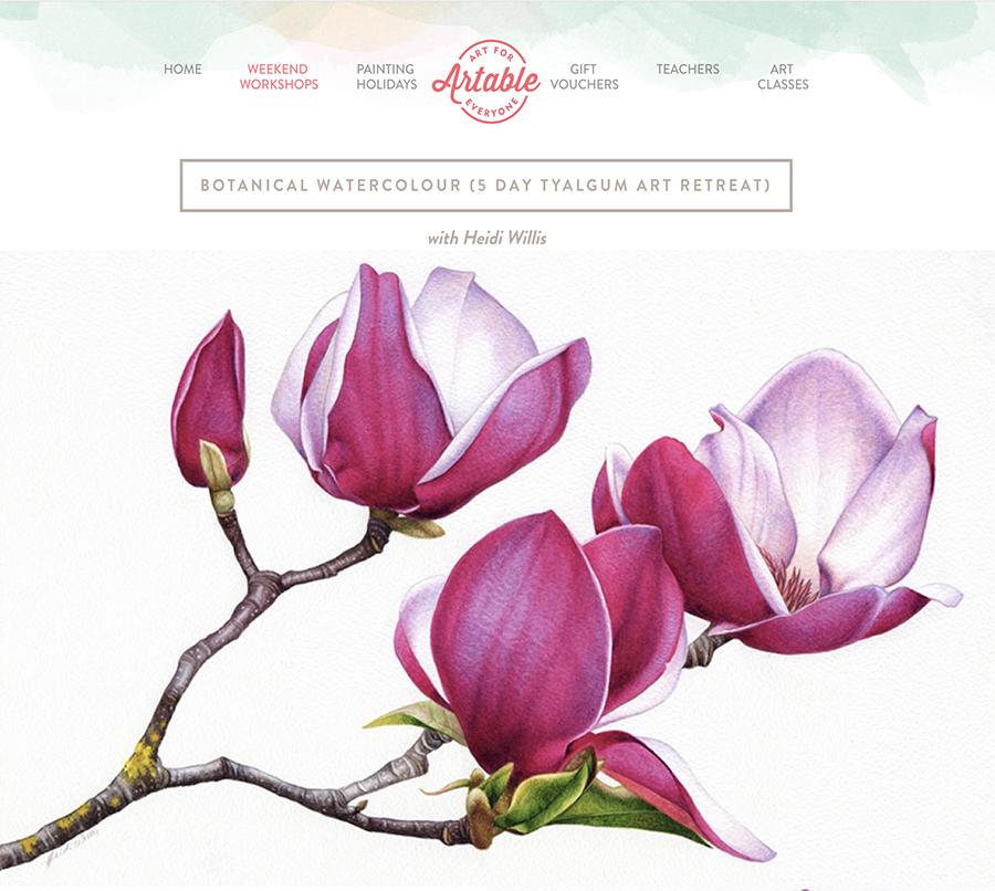 heidi willis_watercolour_botanical art_painting class
