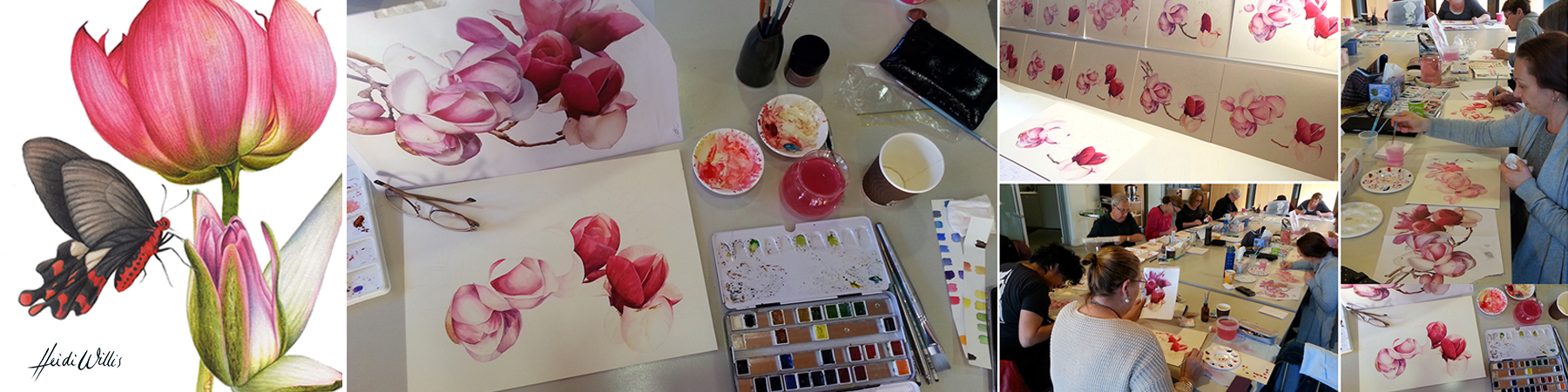 heidi-willis_watercolour_botanical-painting_workshop_masterclass