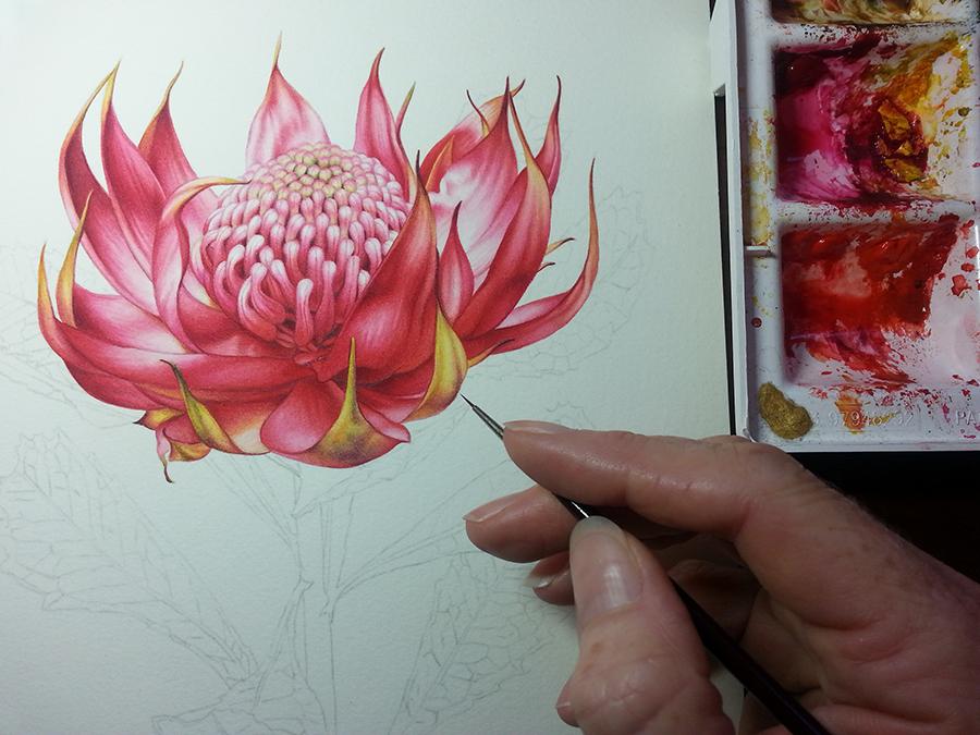 Heidi Willis_Watercolor_watercolour_Teacher_tutorial_Botanical_Online classes