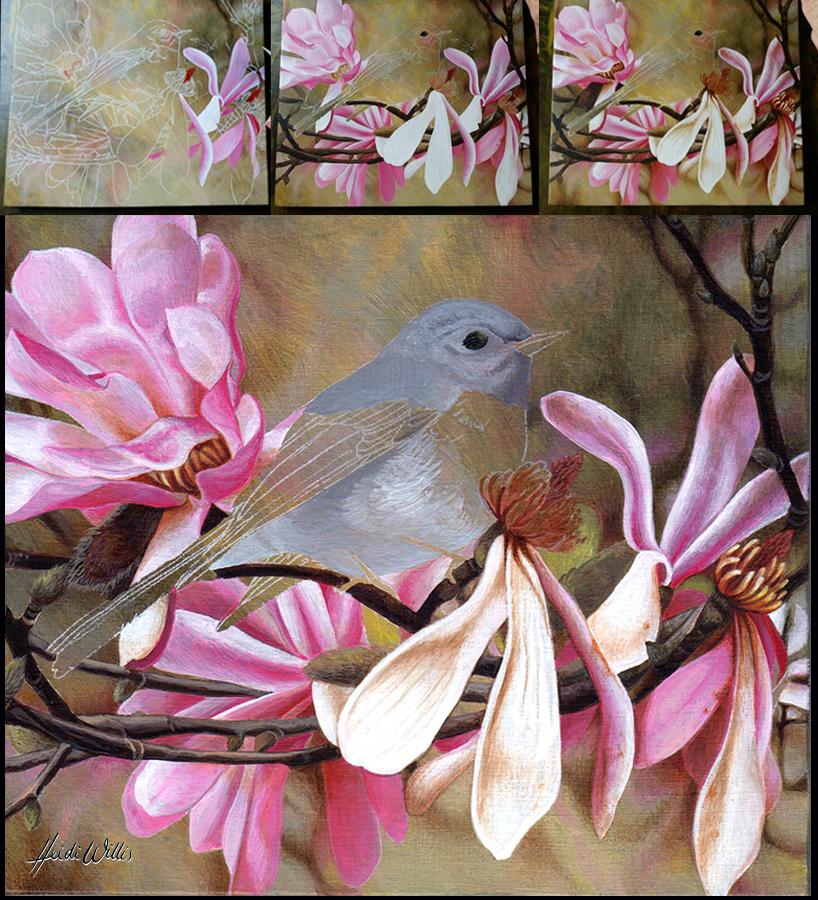 heidi willis_rose robin_natural history painting_bird art_acrylics